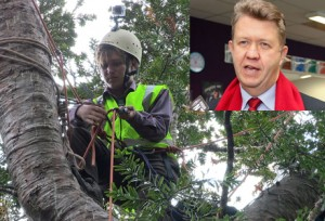 "Advocates of the tree are now ""certain"" it will be cut down when Cunliffe scales it tomorrow morning."