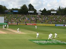 Picture not representative of actual test cricket attendance.
