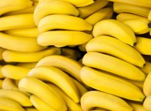 PICTURED: Lots of bananas