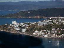 PICTURED: Crude oil from Simon Bridges' scalp fills Wellington's harbour.